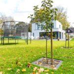 Steuervorteile für Privatgärten