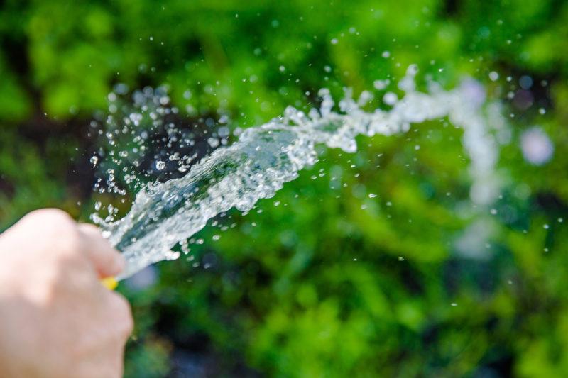 Richtig Gießen mit dem Wasserschlauch